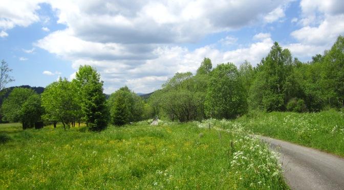 Durchs grüne Herz Mitteleuropas | Nationalpark Sumava | Böhmer Wald | Tschechien