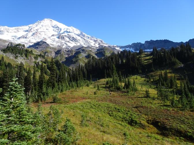 Mount Rainier – One extravagantly beautiful alpine garden | USA