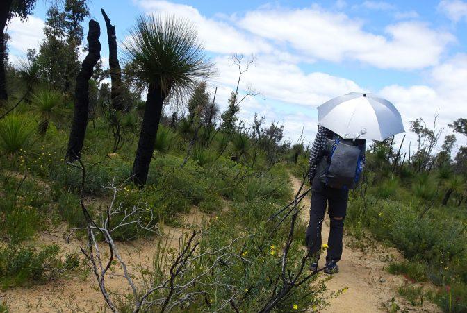 Bibbulmun Track – Part 2 | Australia