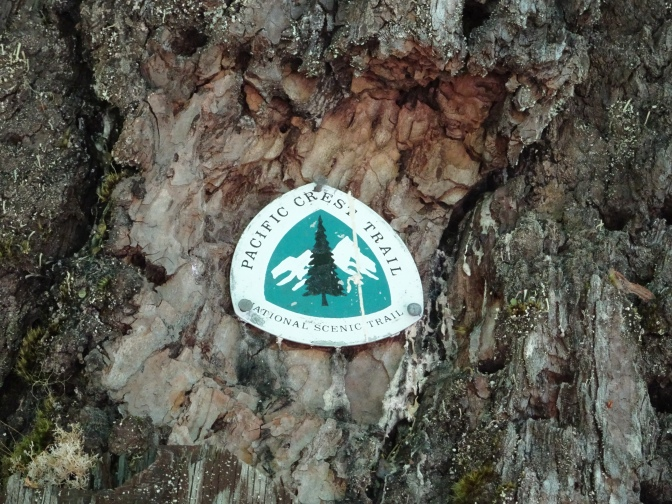 Pacific Crest Trail 2017 – Before I leave from Mexico to Canada | USA